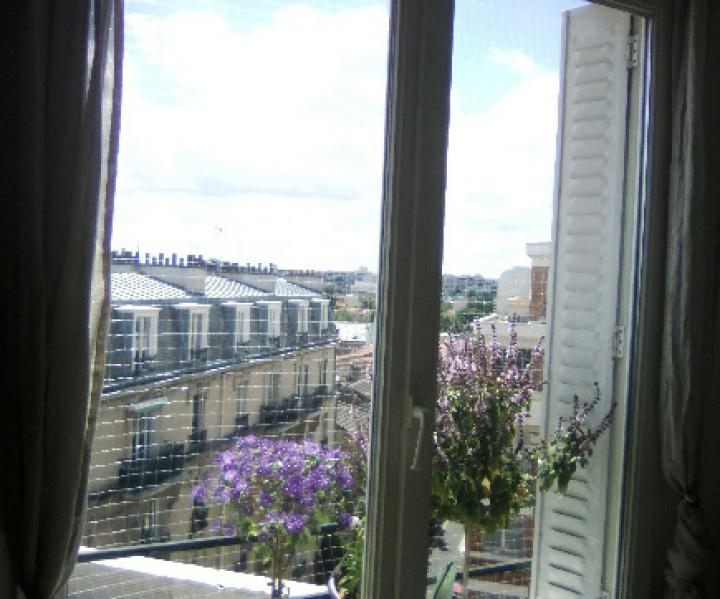 Filet de protection pour chat sur une fenêtre à Paris