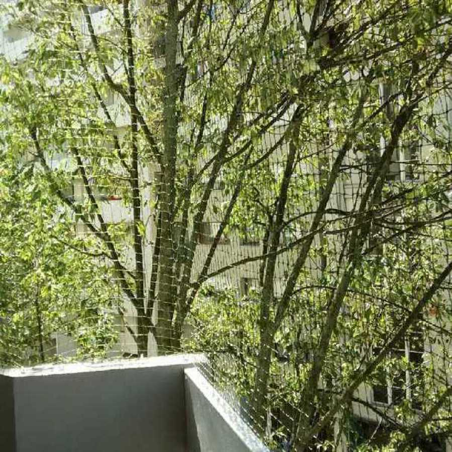 Vue à travers un filet pour chat transparent sur un balcon à Paris